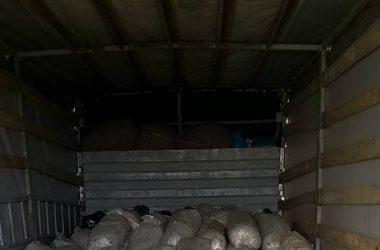 15726652 983894478407534 832249878229170291 n 380x250 - Atık kompostların değerlendirilmesi