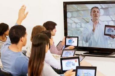 online istiridye mantari egitimi 380x250 - Online istiridye mantarı yetiştiriciliği eğitimi