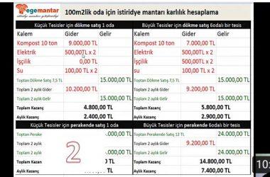 IMG 7642 380x250 - (video)İstiridye Mantarı yetiştiriciliğinde ne kadar para kazanırım?