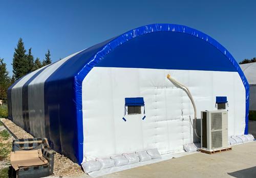 İstiridye mantarı çadırı özellikleri